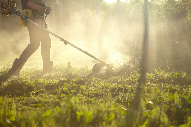 Работайте, чтобы косить триммер. процесс скашивания высокой травы с помощью триммера. выборочный фокус на необработанные тава и разбрасывать частицы скошенной травы вечерние огни пробиваются сквозь туман