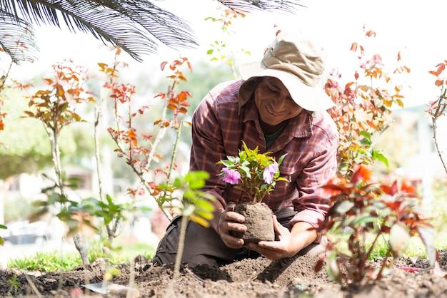 Латинский мужчина сажает цветы в красивом зеленом саду