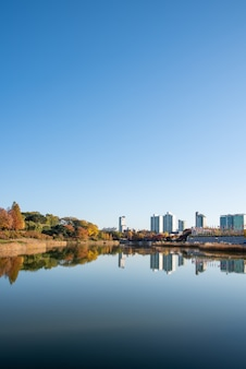 Осенние листья. осенний пейзаж. озеро. сеульский олимпийский парк в южной корее.