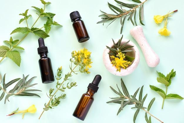 漢方薬、自然化粧品、植物療法。