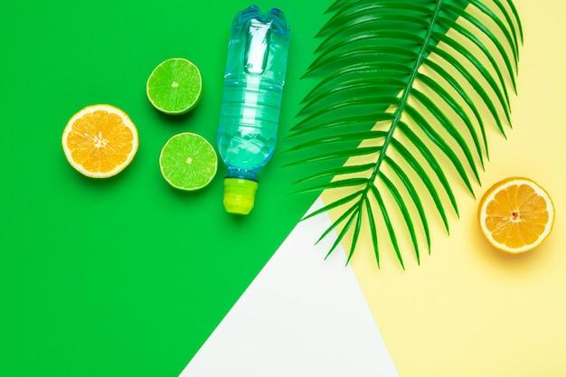 熱帯の葉とボトル水。デトックスフルーツ注入水。