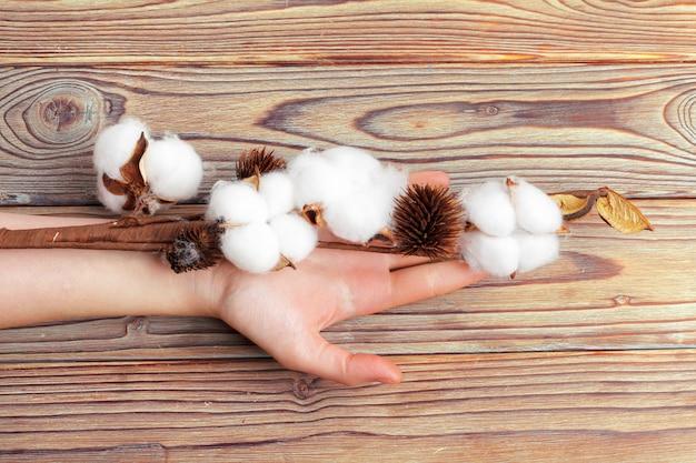 綿の花を持つ女性