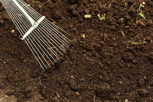 Выстрел копать на участке. крупный план, концепция садоводства
