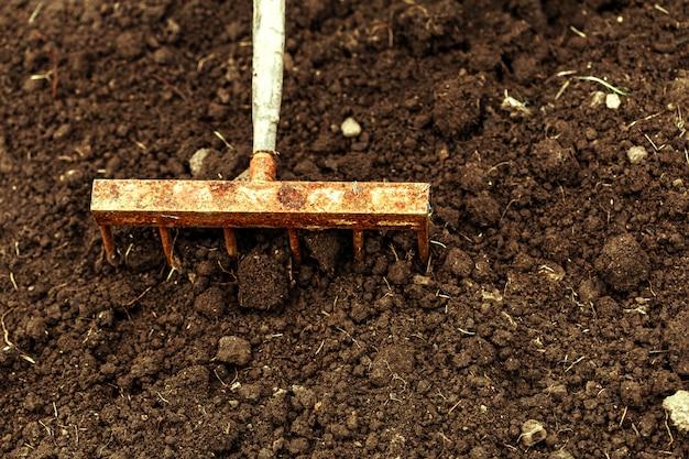 割り当てで掘りのショット。クローズアップ、ガーデニングの概念