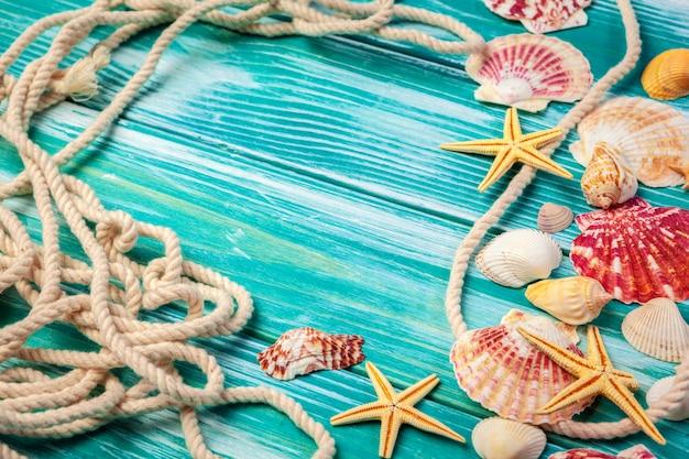 Различные морские раковины на цветной деревянный стол