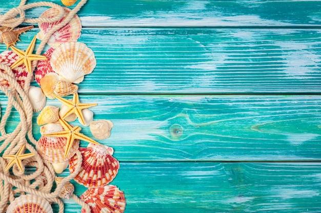 Различные морские раковины на деревянном фоне