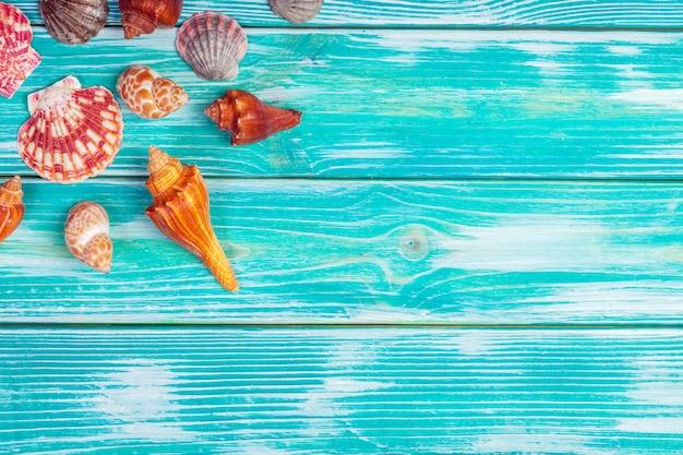 Различные морские раковины на деревянный стол