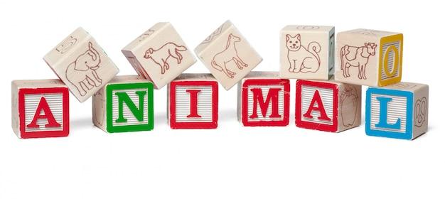 Красочный алфавит блоков. слово животное на белом