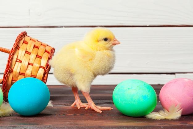 Маленький птенец с пасхальными яйцами