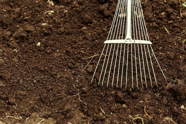 割り当てで掘りのショット。