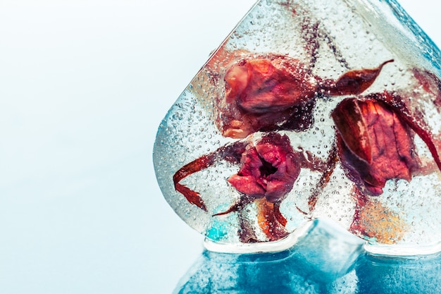 アイスキューブの冷凍ローズ