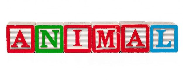 Красочные блоки алфавита с буквами