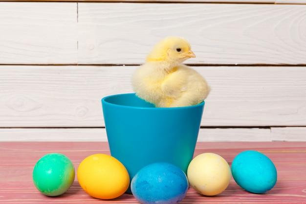 Цыпленок с пасхальными яйцами на деревянном столе