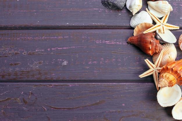 木製の背景の色の異なる貝殻