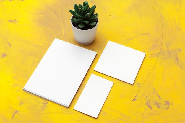 空白の文房具とサボテンの植物