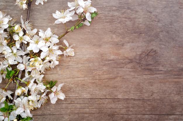 Ветка цветущей вишни на деревянном столе