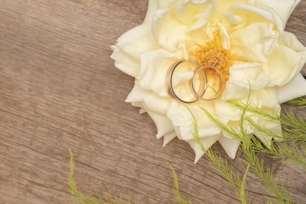 木製の背景に白いバラの結婚指輪
