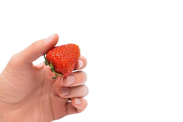 白い背景に分離された熟したイチゴを持っている女性の手のクローズアップ