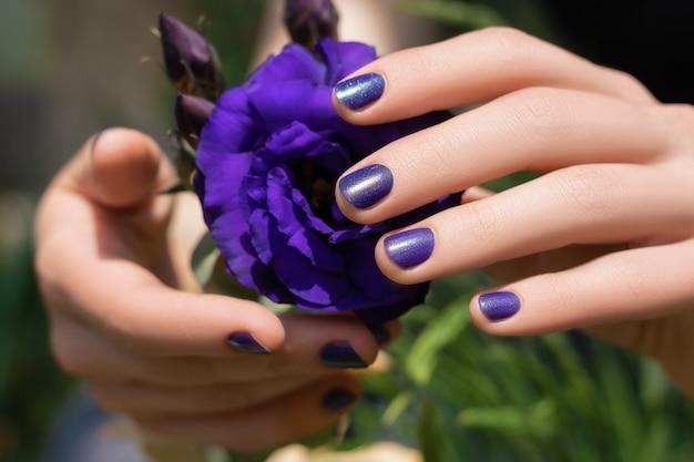 Фиолетовый дизайн ногтей. женские руки с фиолетовым маникюром, держа цветок эустомы
