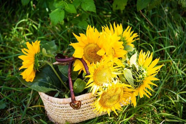 Букет подсолнухов лежит в соломенной сумке на зеленой траве.