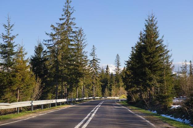 車で旅行します。森の中の山の中の道。ポーランドのタトラ。