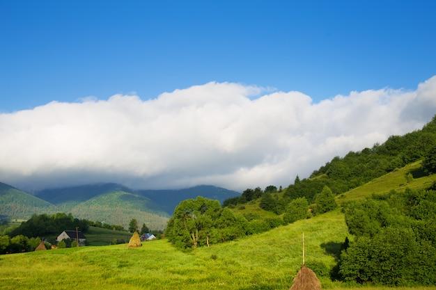 Карпатская природа летом