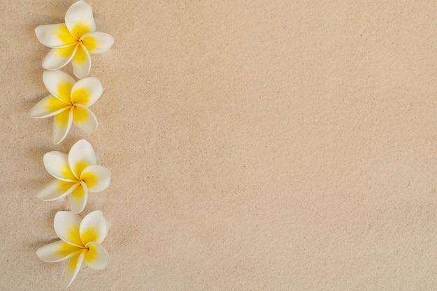 砂のビーチの背景に花プルメリア