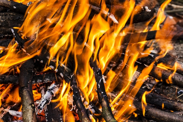 燃えるキャンプファイヤーのクローズアップ、キャンプファイヤーの燃焼は木の炎のクローズアップで大きなオレンジ色と黄色の炎にログインします