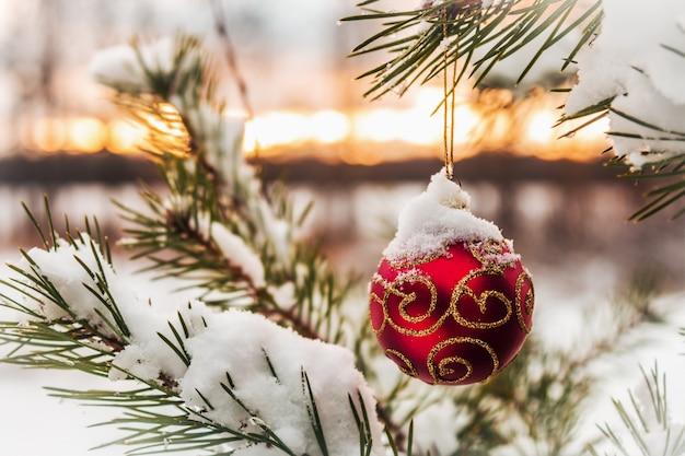 クリスマスツリーに掛かっているクリスマスボール