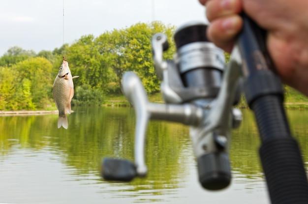 フックに引っかかった魚