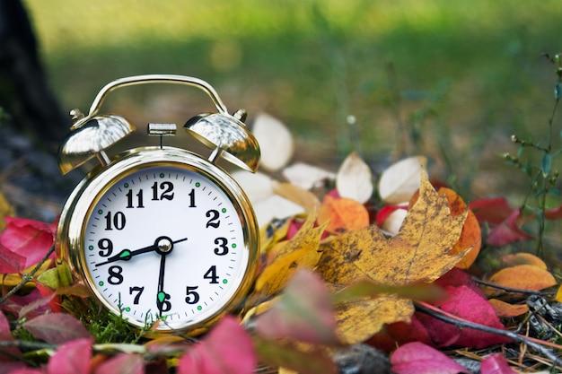 秋の目覚まし時計