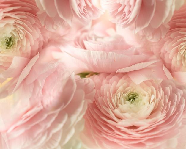 淡いピンクの花のテクスチャ背景