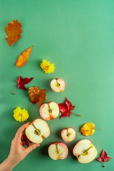 Осенняя тематическая плоская планировка из свежих половинок аплла и различных листьев, женская рука на зеленом фоне