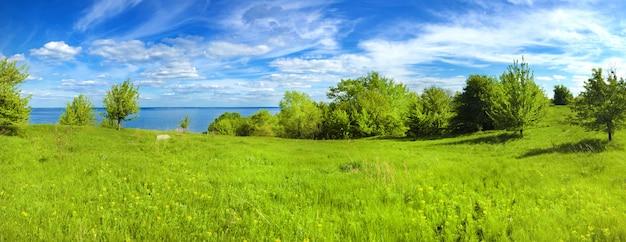 明るい曇り空と晴れた日のウクライナ、カニウ貯水池海岸の美しいパノラマ