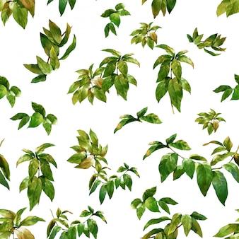 葉、白のシームレスパターンの水彩イラスト
