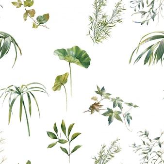 Акварельные иллюстрации листьев, бесшовный узор на белом