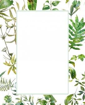 白い背景の上の葉のイラストの水彩画