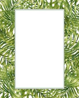 Акварельные иллюстрации роспись листьев бамбука, на белом фоне