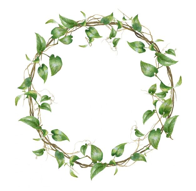 Акварельная живопись из листьев с кругом на белом фоне