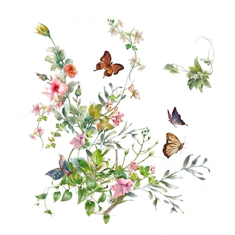 Акварельная живопись из листьев и цветов, на белом фоне