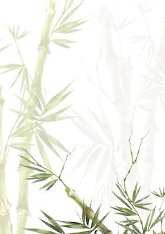 笹の葉、白い背景の上の水彩イラスト絵画