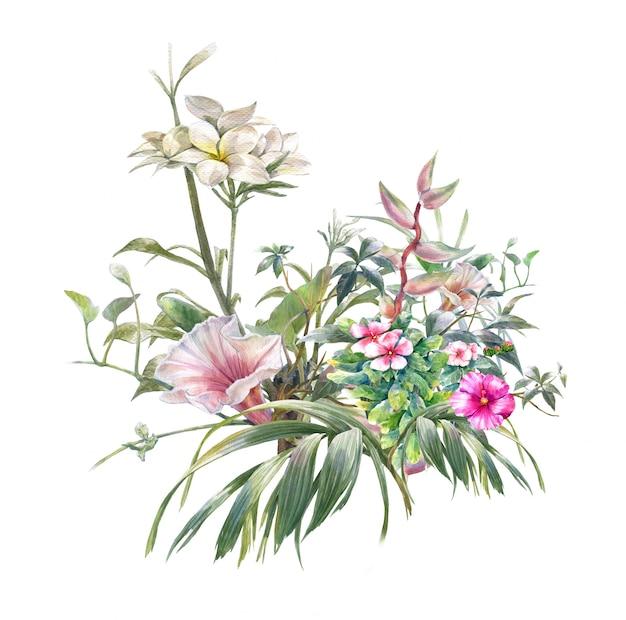 Акварельная живопись из листьев и цветов на белом фоне