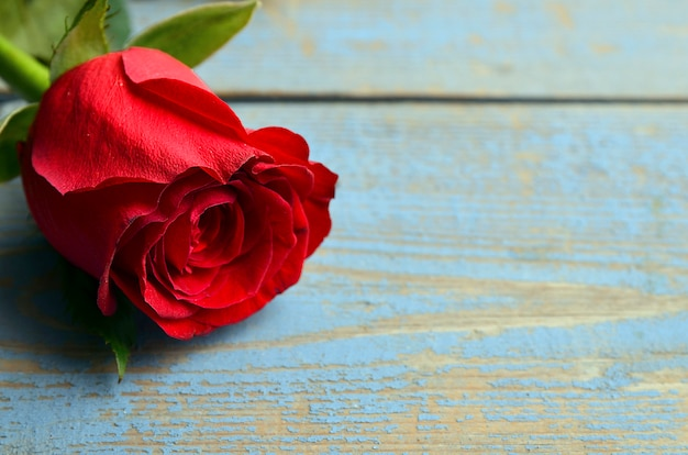 Роза на синем фоне деревянные на день святого валентина с копией пространства.