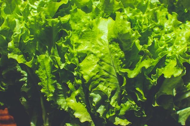 Свежие зеленые листья салата на деревянной поверхности. натуральные органические продукты питания фон