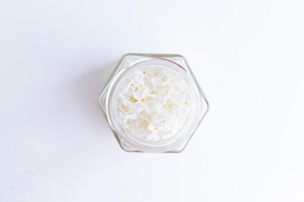 白の透明なガラスの瓶に鳥桜の木の白い花