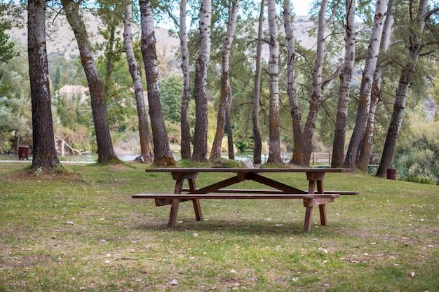 木々に囲まれた自然の中でおやつを食べる木製テーブル。