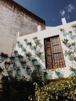 Стена с яркими цветами