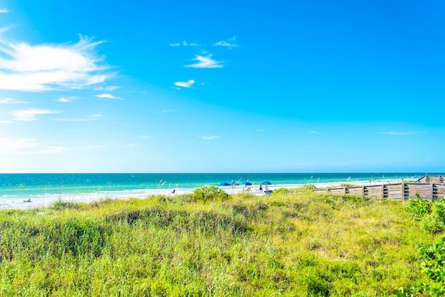 米国フロリダ州の緑の草とインドの岩のビーチ