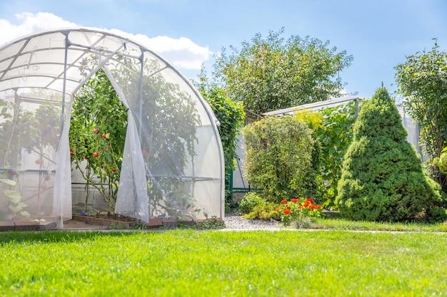 裏庭のプライベートガーデンで野菜と暖かい家