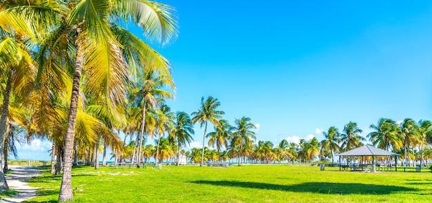 Красивый пляж крэндон парк в ки бискейн в майами